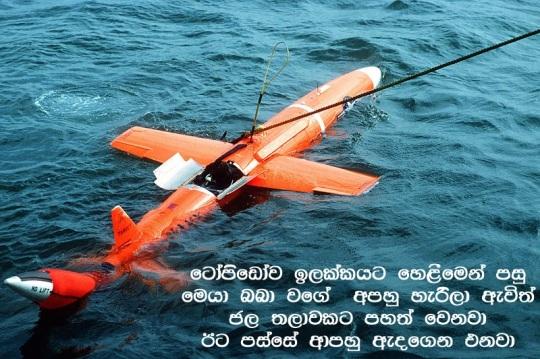 800px-MQM-74C_Chukar_II_floating