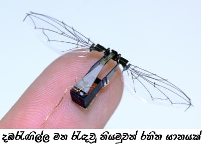 micro-air-vehicle-mav