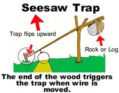 Seasaw Trap